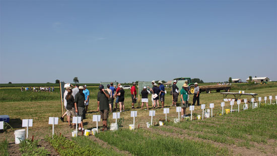 Eastern Ontario Crop Diagnostic Day